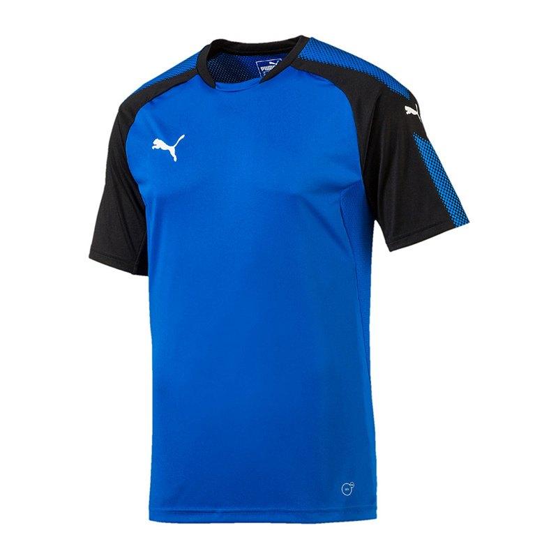 PUMA Ascension Trainingsshirt Blau Schwarz F02 - blau