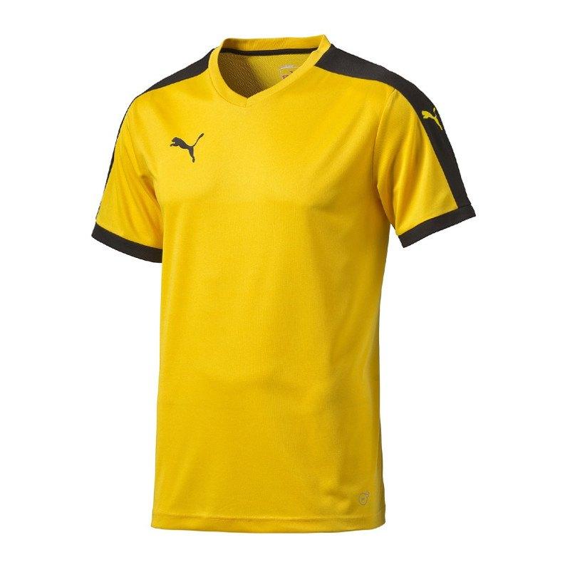 PUMA Pitch Shortsleeved Shirt Trikot Gelb F07 - gelb