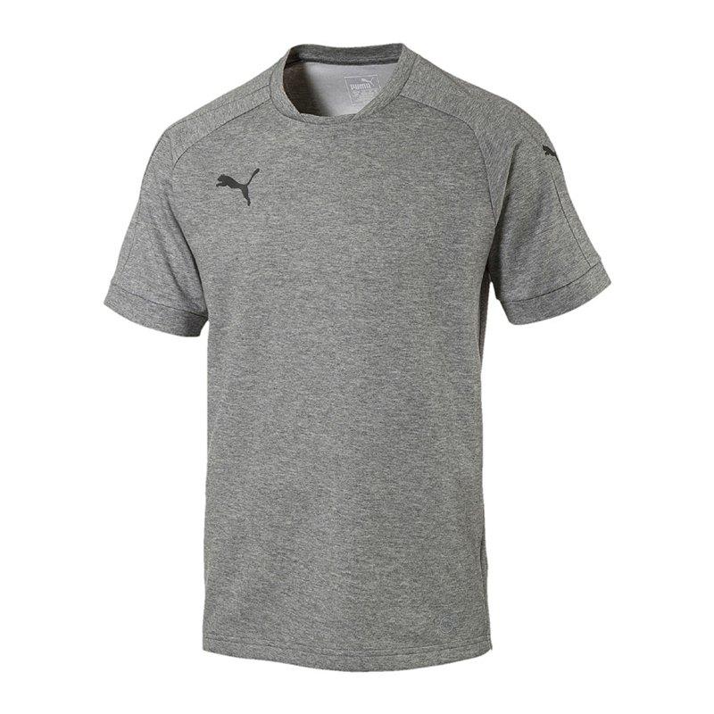 PUMA Ascension Tee T-Shirt Grau F61 - grau