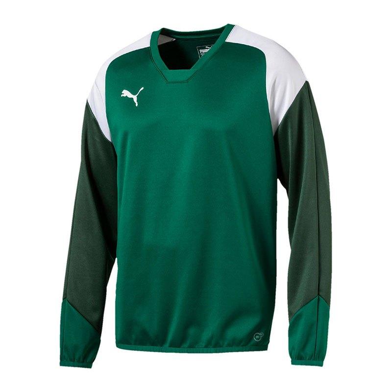 PUMA Esito 4 Training Sweatshirt Grün Weiss F05 - gruen