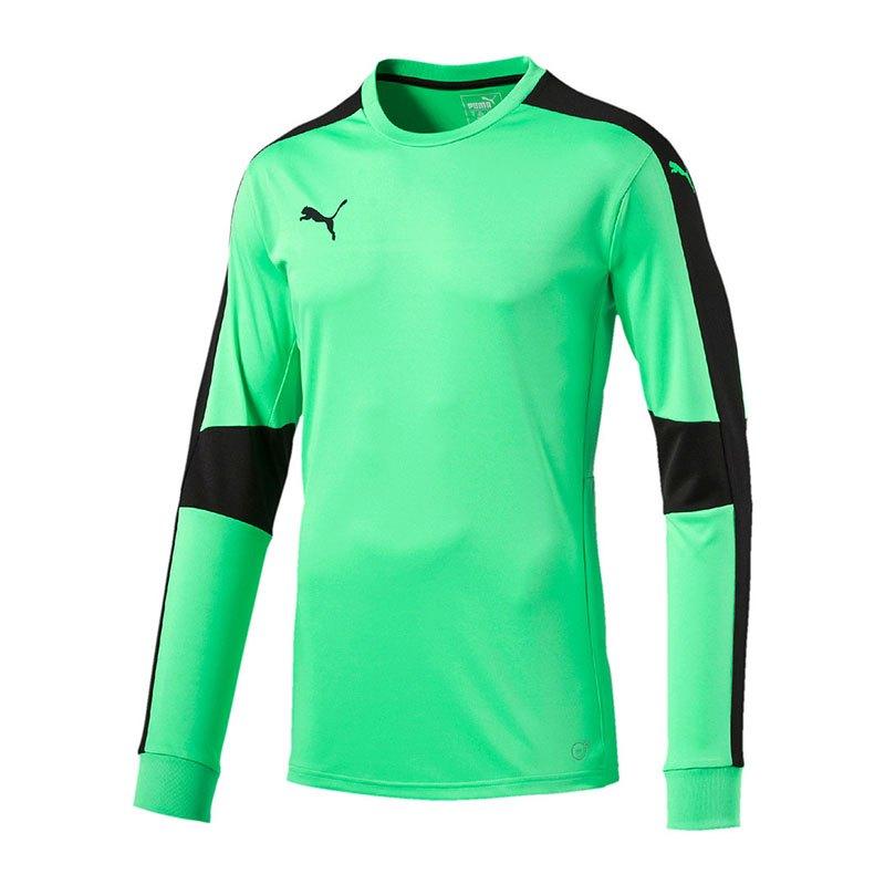 PUMA Triumphant GK Shirt Torwarttrikot Grün F50 - gruen