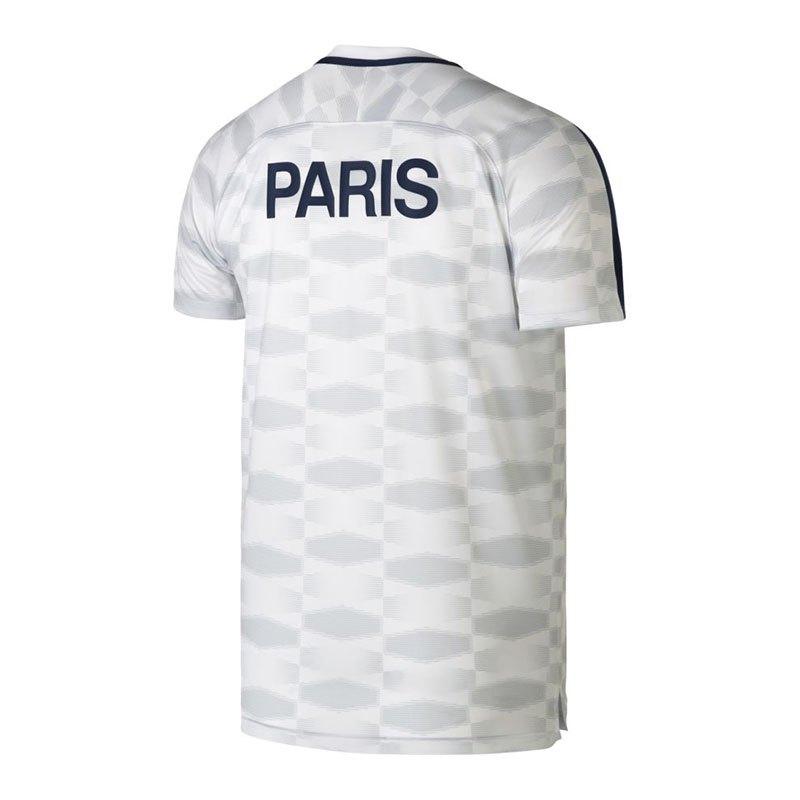 Nike Paris St Germain Dry Squad T Shirt F101 Fanshirt