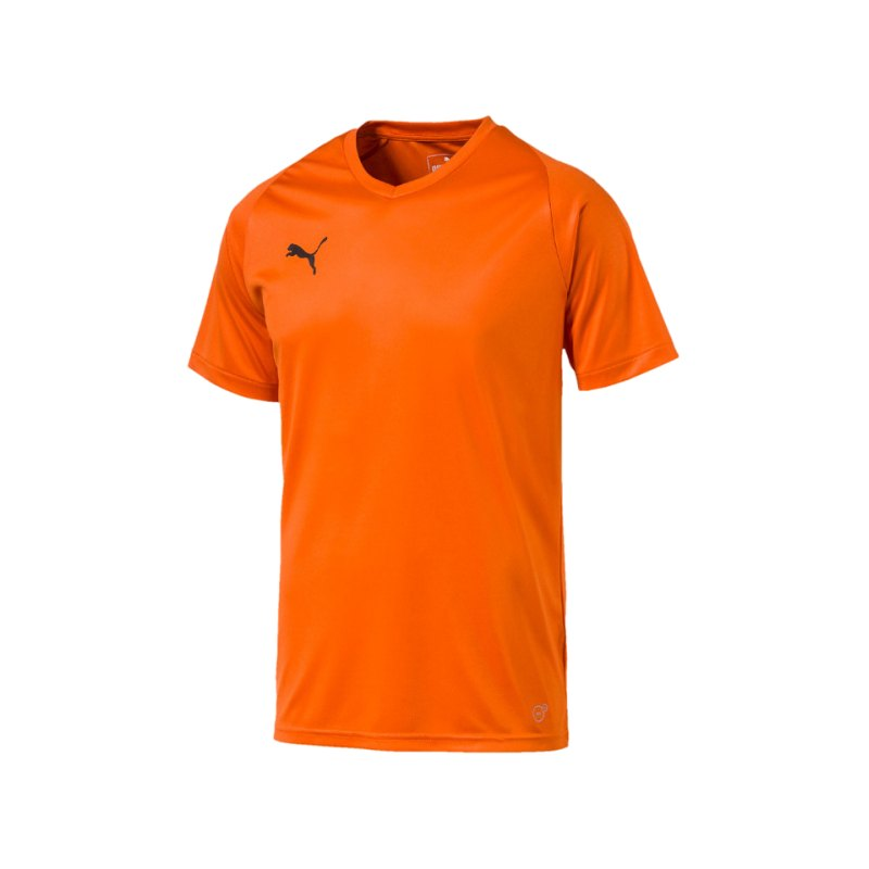 PUMA LIGA Core Trikot kurzarm Orange F08 - orange