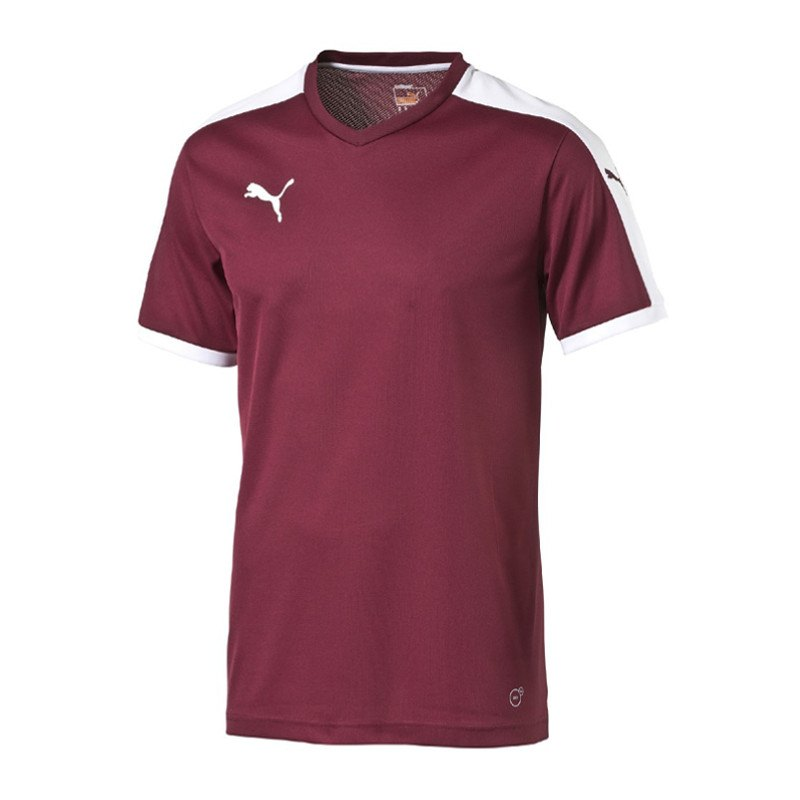 PUMA Pitch Shortsleeved Shirt Trikot Rot F09 - rot