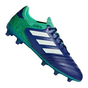 adidas-copa-18-2-fg-blau-gruen-fussballschuhe-footballboots-nocken-rasen-firm-ground-klassiker-cp8955.jpg