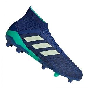 adidas-predator-18-1-fg-blau-gruen-fussballschuhe-footballboots-nocken-firm-ground-naturrasen-cm7411.jpg