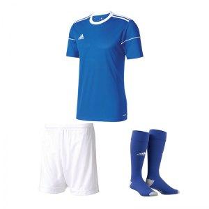 adidas-squadra-17-trikotset-blau-weiss-equipment-mannschaftsausstattung-fussball-jersey-ausruestung-spieltag-ss99149trikotset.jpg