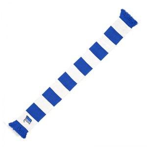 hertha-bsc-berlin-blockstreifen-schal-blau-weiss-fanschal-fanartikel-teamwear-accessoires-replica-5002622.jpg