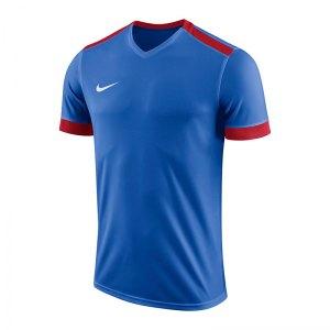 nike-dry-park-derby-ii-trikot-kids-f463-trikot-shirt-team-mannschaftssport-ballsportart-894116.jpg