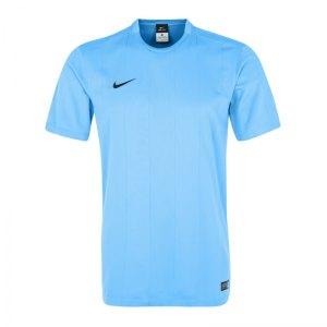 nike-striped-segment-2-trikot-kurzarm-spielertrikot-herrentrikot-teamsport-men-herren-maenner-blau-f412-644634.jpg