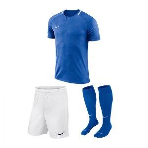 nike-trikotset-challenge-2-blau-f463-trikot-short-stutzen-teamsport-ausstattung-893964.jpg