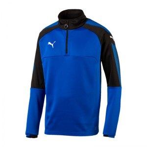 puma-ascension-1-4-zip-top-training-blau-f02-sportbekleidung-teamsport-herren-men-maenner-sweatshirt-654920.jpg