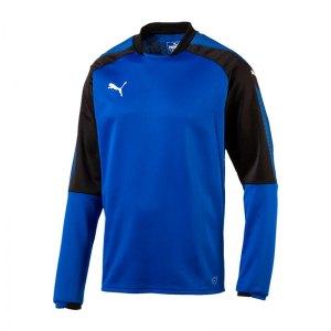 puma-ascension-training-sweatshirt-blau-f02-sportbekleidung-herren-men-maenner-longsleeve-langarmshirt-654918.jpg