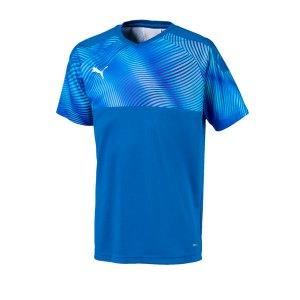 puma-cup-jersey-trikot-kurzarm-kids-blau-f02-fussball-teamsport-textil-trikots-703774.jpg