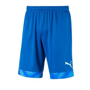 puma-cup-short-blau-weiss-f02-fussball-teamsport-textil-shorts-704034.jpg
