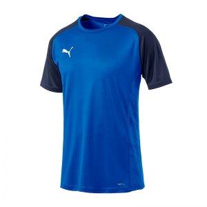puma-cup-sideline-core-t-shirt-blau-f02-fussball-teamsport-textil-t-shirts-656051.jpg