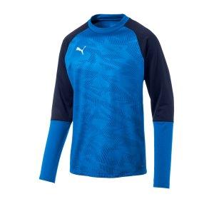 puma-cup-training-core-sweatshirt-blau-f02-fussball-teamsport-textil-sweatshirts-656021.jpg