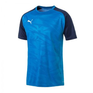 puma-cup-training-core-t-shirt-blau-f02-fussball-teamsport-textil-t-shirts-656027.jpg