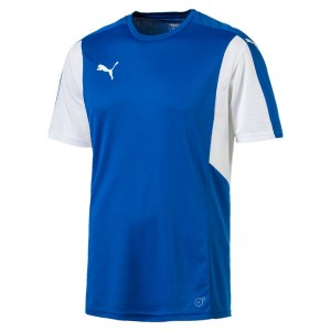 puma-dominate-trikot-kurzarm-blau-weiss-f02-shortsleeve-shirt-jersey-matchwear-spiel-training-teamsport-703063.jpg