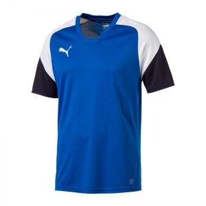 puma-esito-4-trainingsshirt-blau-weiss-f02-training-sport-fussball-teamsport-trikot-655221.jpg