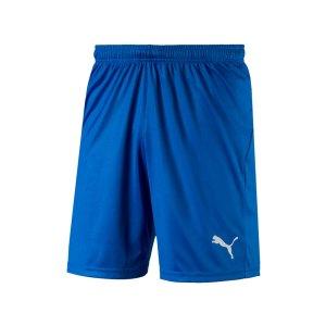 puma-liga-core-short-mit-innenslip-blau-f02-fussball-spieler-teamsport-mannschaft-verein-703615.jpg