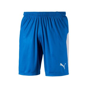 puma-liga-short-blau-weiss-f02-teamsport-textilien-sport-mannschaft-703431.jpg