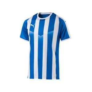puma-liga-striped-trikot-kurzarm-blau-weiss-f02-teamsport-textilien-sport-mannschaft-erwachsene-703424.jpg