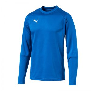 puma-liga-training-sweatshirt-blau-f02-teampsort-mannschaft-ausruestung-655669.jpg