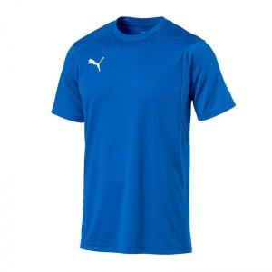 puma-liga-training-t-shirt-blau-f02-shirt-team-mannschaftssport-ballsportart-training-workout-655308.jpg