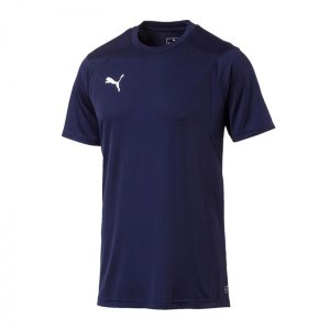 puma-liga-training-t-shirt-blau-f06-shirt-team-mannschaftssport-ballsportart-training-workout-655308.jpg