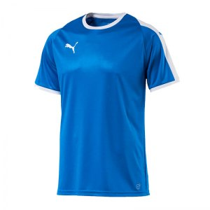 puma-liga-trikot-kurzarm-rot-blau-f02-funktionskleidung-vereinsausstattung-team-ausruestung-mannschaftssport-ballsportart-703417.jpg