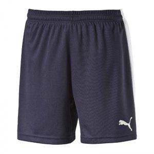 puma-pitch-short-mit-innenslip-hose-kurz-kindershort-teamwear-teamsport-vereinsausstattung-kids-children-kinder-blau-f06-702075.jpg