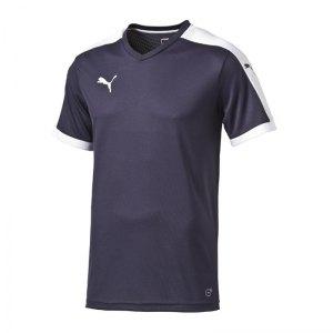 puma-pitch-shortsleeved-shirt-trikot-kurzarmtrikot-jersey-herrentrikot-teamwear-vereinsausstattung-men-herren-blau-f06-702070.jpg