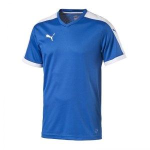 puma-pitch-shortsleeved-shirt-trikot-kurzarmtrikot-jersey-kindertrikot-teamwear-vereinsausstattung-kids-children-blau-f02-702070.jpg