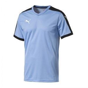 puma-pitch-shortsleeved-shirt-trikot-kurzarmtrikot-jersey-kindertrikot-teamwear-vereinsausstattung-kids-children-blau-f25-702070.jpg
