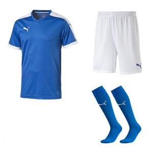 puma-pitch-e-trikotset-blau-f02-team-mannschaft-sport-bekleidung-spiel-match-teamwear-702070-701945-702565.jpg
