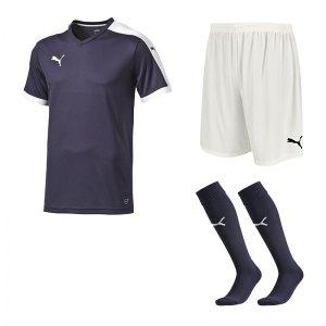 puma-pitch-e-trikotset-blau-f06-team-mannschaft-sport-bekleidung-spiel-match-teamwear-702070-701945-702565.jpg