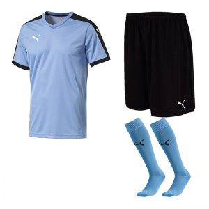 puma-pitch-e-trikotset-blau-f25-team-mannschaft-sport-bekleidung-spiel-match-teamwear-702070-701945-702565.jpg