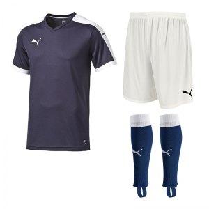 puma-pitch-trikotset-blau-f06-team-mannschaft-sport-bekleidung-spiel-match-teamwear-702070-701945-702565.jpg