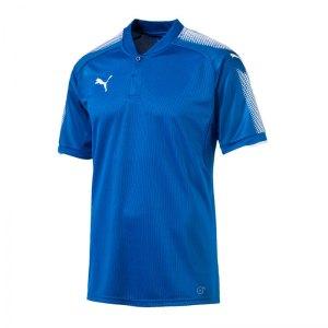 puma-striker-trikot-kurzarm-blau-weiss-f02-herren-fussball-kurzarm-trikot-teamsport-703065.jpg