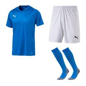 puma-trikotset-liga-core-blau-weiss-f02-trikot-short-stutzen-teamsport-ausstattung-703509.jpg