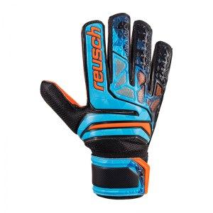 reusch-prisma-sd-ltd-tw-handschuh-blau-f998-gloves-keeper-goalie-torspieler-equipment-3870005.jpg
