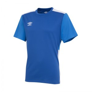 umbro-training-poly-tee-t-shirt-blau-fevb-64901u-fussball-teamsport-textil-t-shirts-manschaft-ausruestung.jpg
