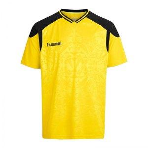 hummel-sirius-trikot-kurzarm-gelb-f5115-equipment-mannschaftausruestung-kit-teamport-spielermode-jersey-003631.jpg