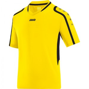 jako-block-trikot-gelb-schwarz-f03-teamsport-vereine-indoor-handball-volleyball-men-herren-4197.jpg