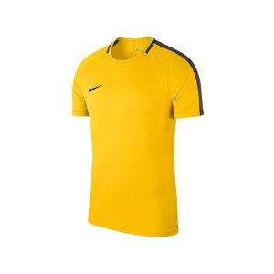 nike-academy-18-football-top-t-shirt-kids-f719-shirt-oberteil-trainingsshirt-fussball-mannschaftssport-ballsportart-893750.jpg