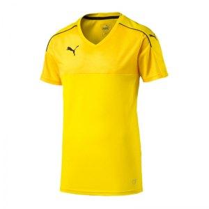 puma-accuracy-trikot-kurzarm-jersey-teamsport-vereine-kids-kinder-gelb-f07-702214.jpg
