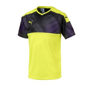 puma-cup-jersey-trikot-kurzarm-kids-gelb-f46-fussball-teamsport-textil-trikots-703774.jpg