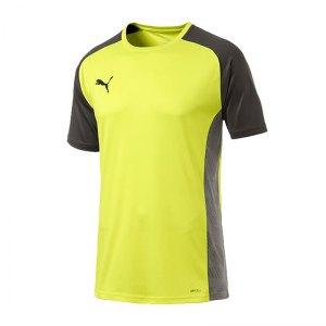 puma-cup-sideline-core-t-shirt-gelb-f16-fussball-teamsport-textil-t-shirts-656051.jpg