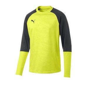 puma-cup-training-core-sweatshirt-gelb-f16-fussball-teamsport-textil-sweatshirts-656021.jpg